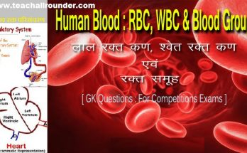 Human Blood Group, RBC, WBC Biology Gk Questions in Hindi